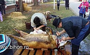 """www.bihon.ro - Festivalul """"Pomana porcului şi a pălincii Boller"""" de la Gyomaendrőd (Ungaria)"""